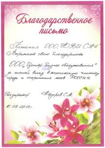 благодарственное письмо от ЮВИ СПб